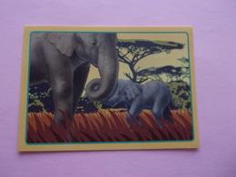 PANINI ANIMAL WORLD Animaux N°537 éléphant Elefant Elefante Elephant - Panini