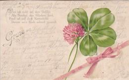 AK Gruss Aus... - Kleeblatt Schleife Blume - Gedicht - 1899 (43106) - Gruss Aus.../ Grüsse Aus...