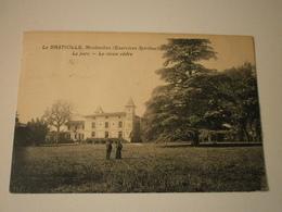 82 Montauban, La Bastiolle, Le Parc, Le Vieux Cèdre (A6p15) - Montauban