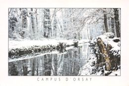 91-ORSAY-N°C-3453-C/0277 - Orsay