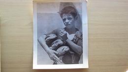 MAZARA DEL VALLO TRAPANI FOTO FORMATO GRANDE SCATTATA DALLE TRUPPE AMERICANE SBARCO IN SICILIA U.S. ARMY - Foto