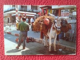 SPAIN TARJETA POSTAL POST CARD BURRO BURROS BURRITO DONKEY DONKEYS BORRICO ÂNE MULI DONK... BOTIJERO BOTIJO...VER FOTOS - Burros