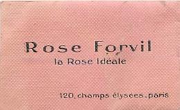PARFUM - DANA - CANOE - CARTE POCHETTE  PARFUMEE (5 X 8 Cm) - Cartes Parfumées