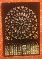 Notre Dame De Paris   CARTOLINA Non  Viaggiata - Quadri, Vetrate E Statue