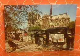 Notre Dame De Paris  Les Bouquinistes CARTOLINA Non  Viaggiata - Notre Dame De Paris
