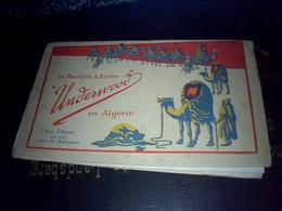 """Vieux Papier  Publicité Machine à Écrire  """"Under Wood & Cie En Algérie """" à Alger Rue D'isly Annèe 1910 ** - Werbung"""