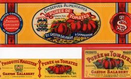 Lot De 3 étiquettes Purée De Tomates Gaston SALABERT Usine De Lamagistére Tarn & Garonne Qualité Extra Pure - Frutta E Verdura