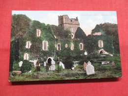 Muckress Abbey Killarney    Ref    3575 - Ireland