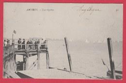 Antwerpen / Anvers - Les Regates - 1907 ( Verso Zien ) - Antwerpen