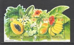 X1076 NIUAFO'OU PLANTS FRUITS BL30 1BL MNH - Fruits