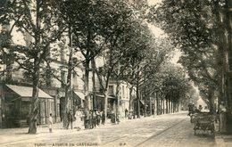 PARIS(14em ARRONDISSEMENT) ARBRE - District 14