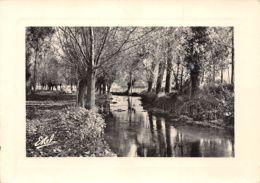 27-IVRY LA BATAILLE-N°C-3497-D/0329 - Ivry-la-Bataille