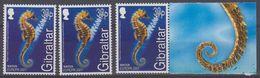 Europa Cept 2001 Gibraltar Seahorse 1v (3x) ** Mnh (44391) - 2001