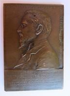466 - Plaque Bronze - A Gustave Dubar - O Roty - Poinçon Corne D'abondance - Bronzes