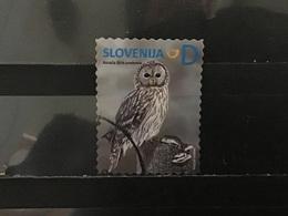 Slovenië / Slovenia - Inheemse Vogels (D) 2014 - Slovenië