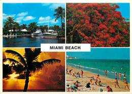 Etats-Unis - Florida - Miami Beach - Multivues - Semi Moderne Grand Format - état - Miami Beach
