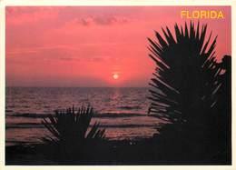 Etats-Unis - Florida - Sarasota - Sunset Over The Gulf Of Mexico - Semi Moderne Grand Format - Bon état - Sarasota