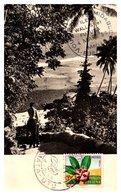 Wallis Et Futuna N°159 - Carte Maximum - Covers & Documents