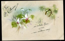 14309 FRANCE CPA  Sainte-Catherine  Carte Souple :  Fleurs Blanches Et Fer à Cheval    B/TB - Sint Catharina