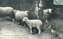 Gardeuse De Mouton Avec Son Chien - Viehzucht