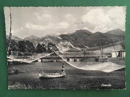 Cartolina Vinadio - Valle Stura - Panorama - 1954 - Massa