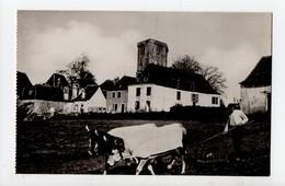 ORTHEZ - 64 - Béarn - Le Labourd - Vieilles Maisons De La Ville Haute Vers La Tour Moncade - Orthez