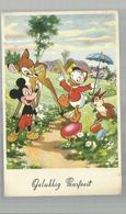 "-* MICKEY  MOUSE *--""""GELUKKIG  PAASFEEST """" - Disneyworld"
