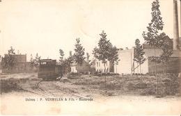 221) BAESRODE - Usines P. Vermeylen & Fils - Goede Staat ! - Dendermonde