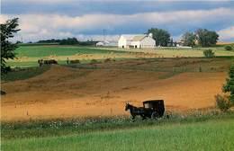 Etats-Unis - Ohio - Ohio's Amish Country - Harvest Time - Moderne - Agriculture - Battage - Attelage De Chevaux - état - Etats-Unis