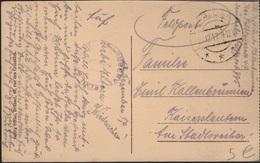 THEA-L47 - ALLEMAGNE CPA Entrée De Château (Belgique,) Expédiée Par Feldpost 1917 - Occupation 1914-18
