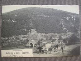 Vallee De La Sure . Sauerthal . Boeufs Atteles . Serie Nels - Postcards