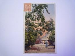 2019 - 2366  CUBA  :  A Native House On A Coffee Plantation   1916   XXX - Cartes Postales