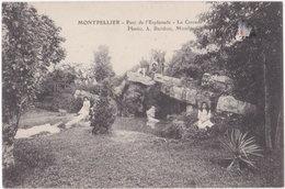 34. MONTPELLIER. Parc De L'Esplanade. La Cascade - Montpellier