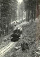57 - CHEMIN DE FER D'ABRESCHVILLER VERS 1948 - REPRODUCTION - Other Municipalities