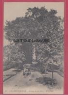 14 - VILLERS SUR MER---Avenue De La Gare---attelage --animé - Villers Sur Mer