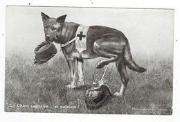 CPA - Guerre 1914 1918 - Patriotique - Le Chien Sanitaire Et Patriote - Oorlog 1914-18