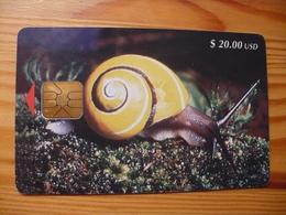 Phonecard Cuba - Snail - Kuba