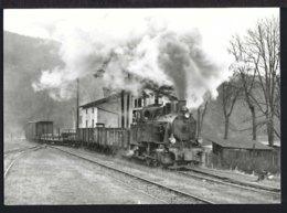 Güterzug Von Brünnighausen - Bahnhof - Dampflok - Schweiz