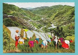 PHILIPPINES THE EIGHTH WONDER OF THE WORLD - Philippines