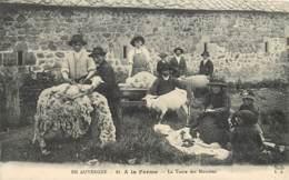 15  , A La Ferme , La Tonte Des Moutons , * CF 370 85 - Non Classés