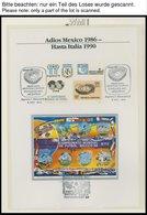 SPORT **,Brief , XIV. Fußball-Weltmeisterschaft 1990 Im Borek Spezialalbum, Mit Blocks, Einzelmarken, Kleinbogen Etc., P - Briefmarken
