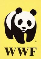 Giant Panda Bear - Pro Natura Suomi Finland - WWF Panda Logo - Ours