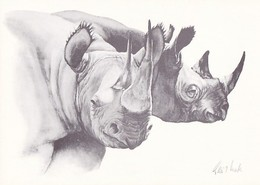 Rhinocero - Rhinocéro - Neushoorn - Nashorn - Rinoceronte - WWF Panda Logo - Kenya - Rhinocéros