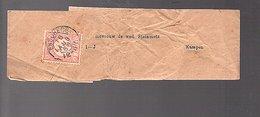 Streifenband Printed Matter Wrapper1889 Enschede > Steinmetz Kampen (FE-11) - Periode 1852-1890 (Willem III)