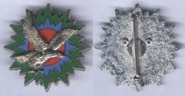 Insigne De L'Etat Major De La Force Aérienne Tactique De La 1ére Région Aérienne - Armée De L'air