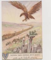 """Divisione Coloniale """"Libia"""" - F.G. - Anni '1920/'1930 - Altre Guerre"""