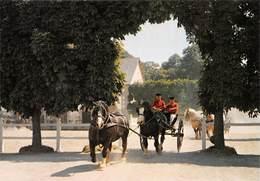 LAMBALLE - Haras National - Attelage En Tandem De Postiers Bretons - Chevaux - Lamballe