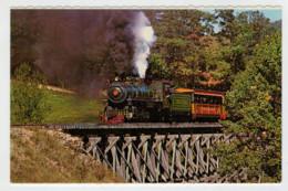 U.S.A.          TRAIN- ZUG- TREIN- TRENI- GARE- BAHNHOF- STATION- STAZIONI  2 SCAN  (NUOVA) - Treni