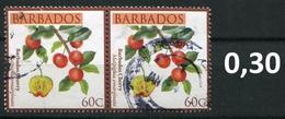 Barbados - Früchte / Fruits 2011 - 0,60 $ Im Paar / Pair - Oo Oblit. Used Gebruikt - Barbados (1966-...)