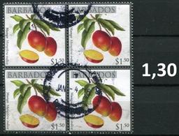 Barbados - Früchte / Fruits 2011 - 1,50 $ Im Viererblock - Bloc De 4 Gem. Scan / As Per Scan - Oo Oblit. Used Gebruikt - Barbados (1966-...)